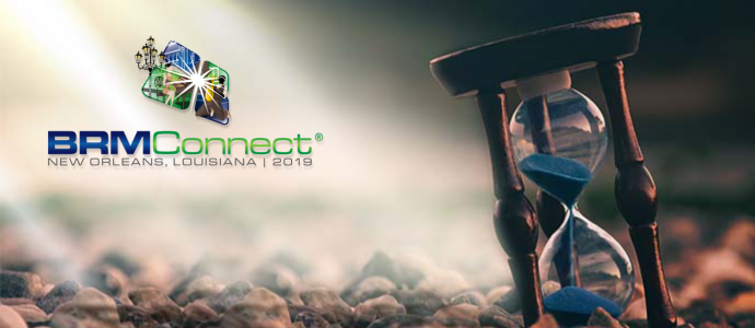 BRMConnect Pre-Early Bird